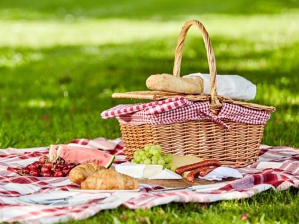5 recettes de lunch box saines pour déjeuner au parc