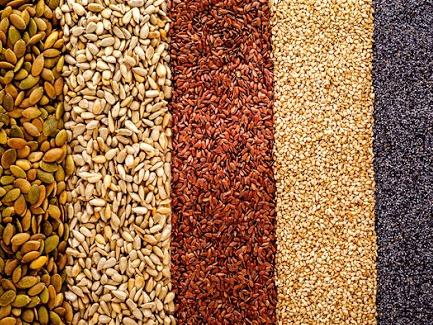 Et si on mangeait des graines ?