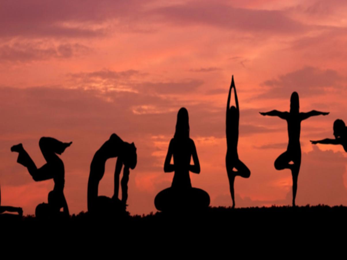 Quel yoga vous va le mieux?