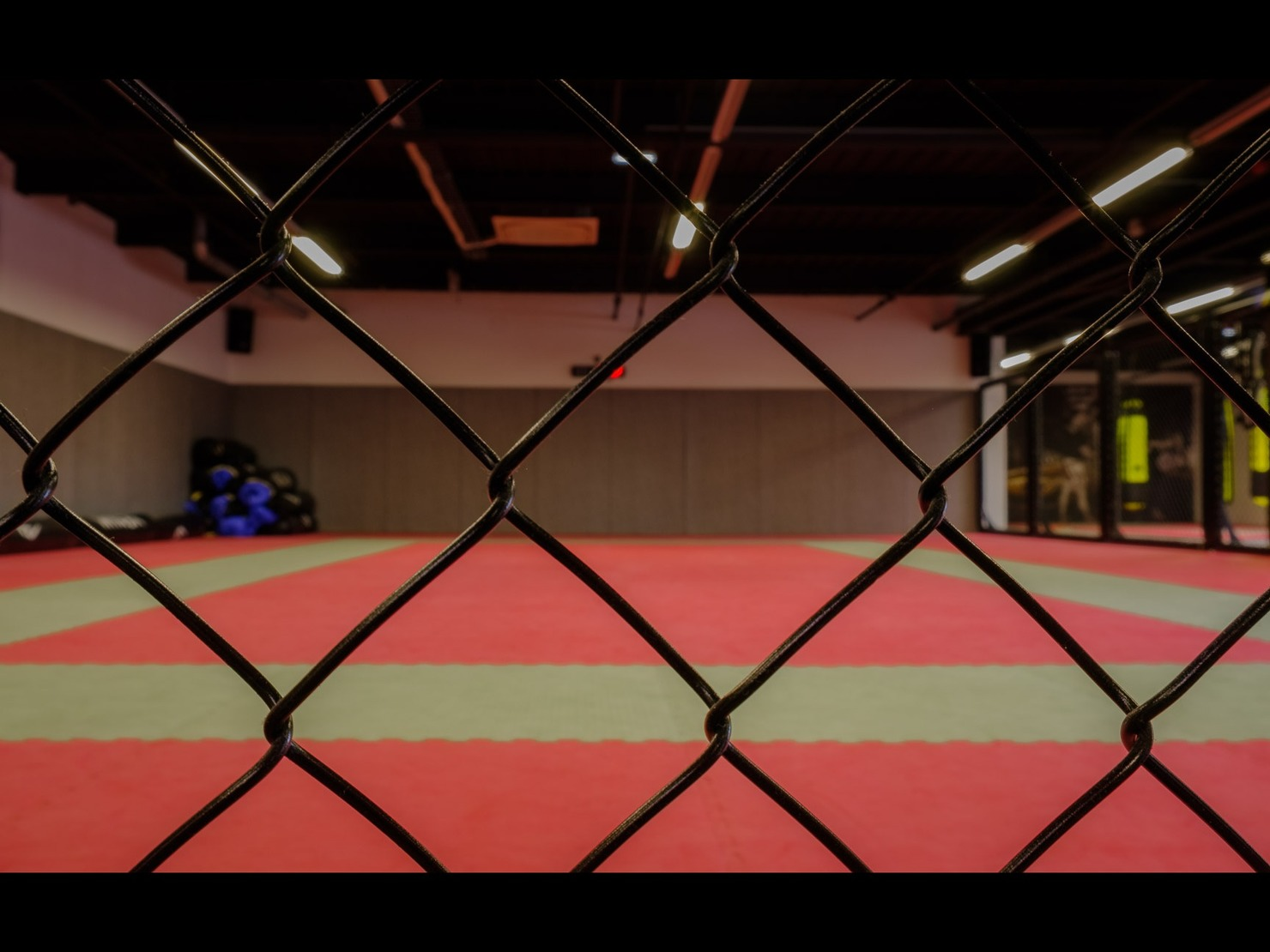 Fightness Sports Club