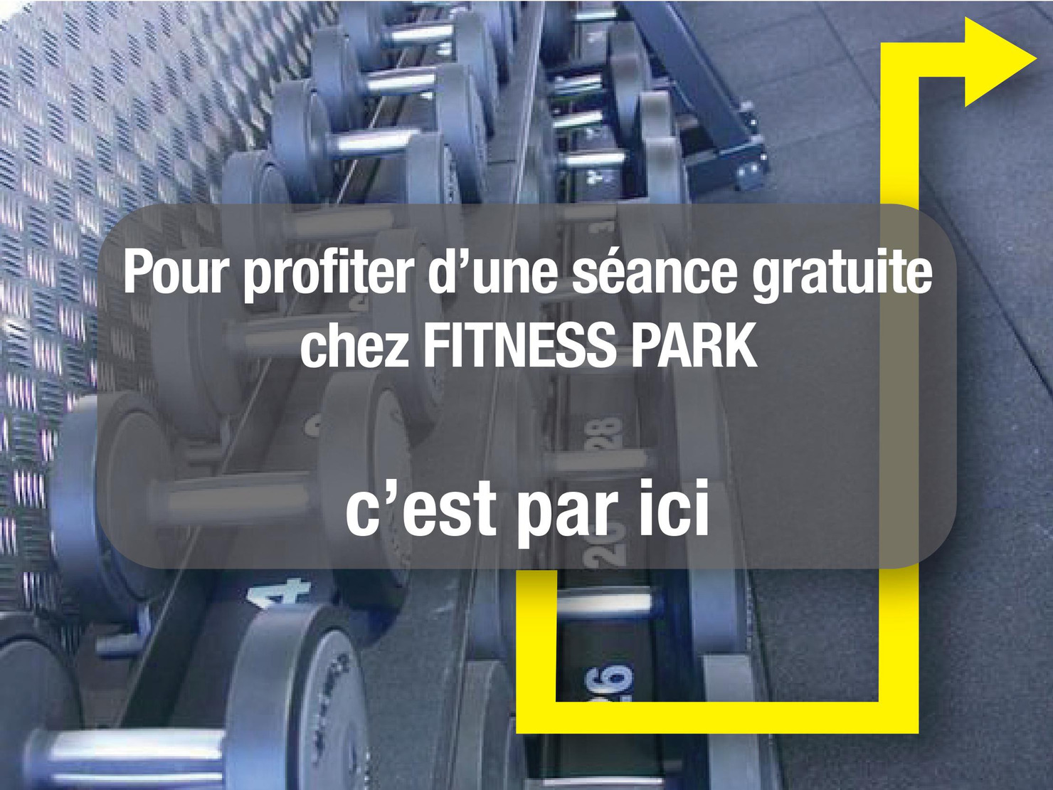 fitness park mulhouse tarifs avis horaires essai gratuit. Black Bedroom Furniture Sets. Home Design Ideas